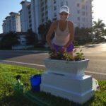 Rebecca Malowany Planting Snell Isle Planter