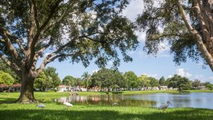 Disston Heights Neighborhood St. Petersburg, FL