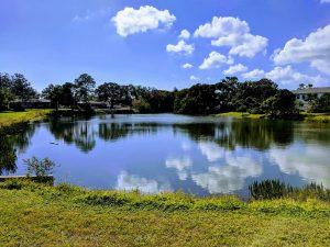 Peaceful Harshaw Lakes
